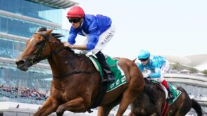 Rubisaki is one of Patrick Payne's leading chances at Flemington on Saturday. Picture: AAP