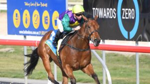 Hurtle, an easy debut winner at Ballarat Synthetic, is unknown on heavy ground. Picture: Racing Photos