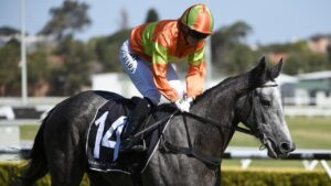 St Covet's Spirit after winning at Canterbury. Picture: AAP Image–Bianca De Marchi