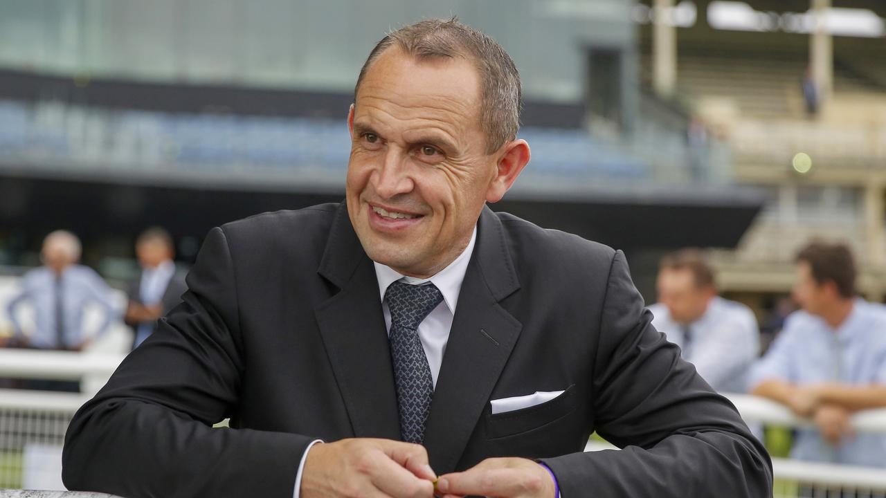 Chris Waller has plenty to smile about taking aim on the not too distant spring. Picture: Jenny Evans–Getty Images