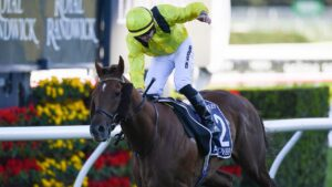 Addeybb winning his first Queen Elizabeth Stakes at Randwick. Picture: AAP Image–Dan Himbrechts