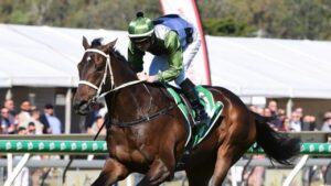 Incentivise demolished his rivals by more than nine lengths at Ipswich last Saturday. Picture: Trackside Photography