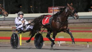 Colt Thirty One will contest the Group 2 Redcliffe Cup on Saturday night.