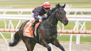 Darceandermill coasts to victory at Mornington under apprentice jockey Will Price. Picture: Getty Images
