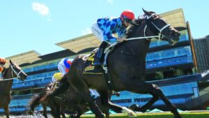 Saturday's meeting at Randwick has been shifted to Rosehill. Picture: Getty Images