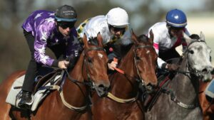 The Greater Sydney Jockeys zone has been enforced from this week. Photo: Mark Metcalfe/Getty Images