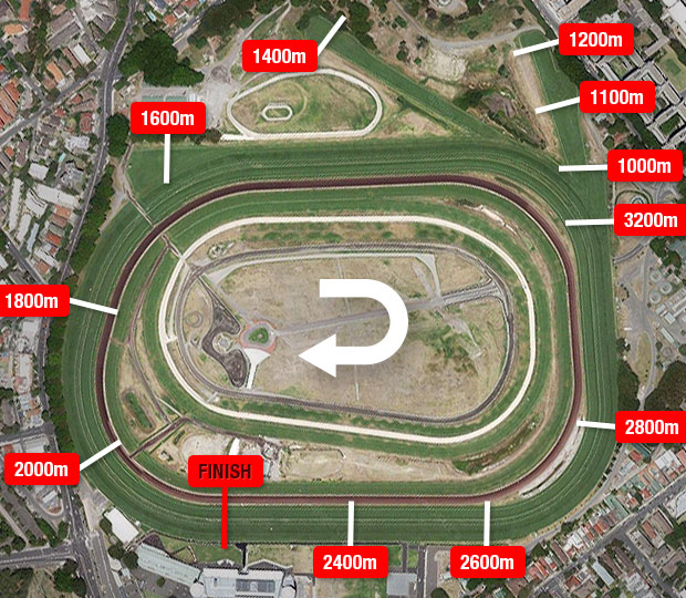 George Main Stakes Barriers