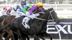 Brett Prebble drives Mongolian Marshal to victory in Winter Championship Series Final at Flemington. Picture: Getty Images
