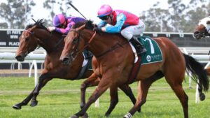 Tricky Gal (outside) can break through for a deserved stakes win in the Winter Stakes at Randwick. Photo: Grant Guy