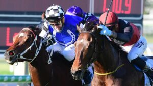 Snowzone (inside) edges out Axe at Doomben before holding on to the win in the stewards' room. Picture: Trackside Photography