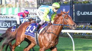 Geoff Duryea is seeking redemption in The Kosciuszko for Front Page. Picture: Racing Photos via Getty Images