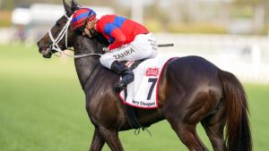 Verry Elleegant was crowned NSW's Horse of the Year. Picture: Getty Images
