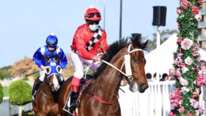 Rubiquitous winning at Eagle Farm ridden by Michael Cahill. Picture: Grant Peters–Trackside Photography