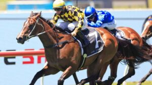 Tommy Berry winning on Remarque at Rosehill Gardens in January. Picture: Mark Evans–Getty Images