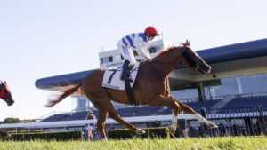 Chat relished the strong tempo to win the Theo Marks Stakes at Kembla Grange. Picture: Getty Images