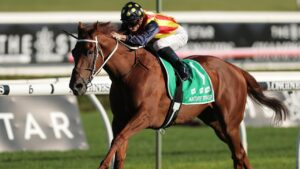 Brilliant sprinter Nature Strip is a chance of tackling Saturday's The Shorts, setting up a clash with several other contenders for The Everest. Picture: Getty Images