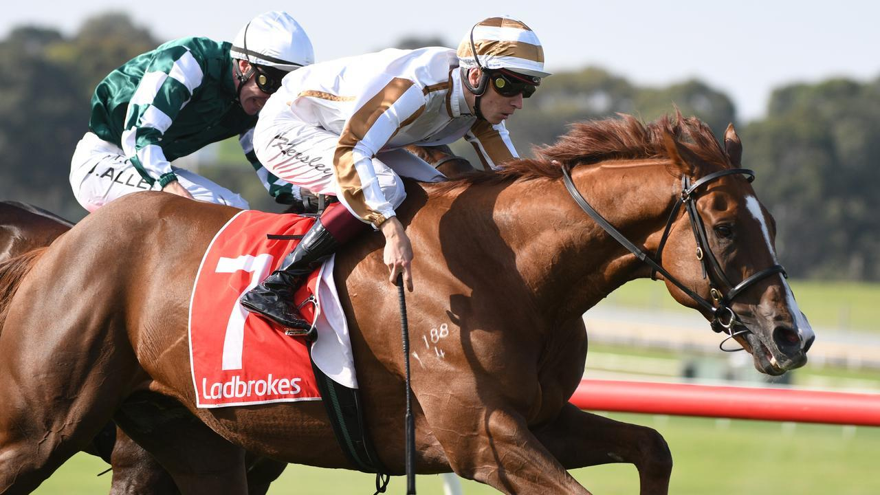 We are keen to roll the dice with the Nick Ryan import at Flemington.