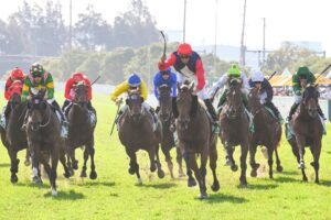 Nash Rawiller celebrates Sweet Deal's win in the Hawkesbury Crown.