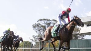 Sweet Deal claimed her 11th – and last – win for trainer John Thompson in the Hawkesbury Crown. Picture: Getty Images