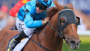 Ellsberg is the horse to beat in the Hawkesbury Guineas. Picture: Mark Evans/Getty Images