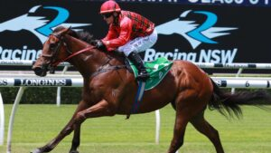Remlaps Gem is a good chance on Wednesday.