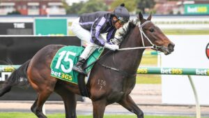 Media Award will jump form a Benchmark 64 win to the Group 1 Australasian Oaks. Picture: Racing Racing Photos via Getty Images