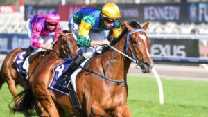 Paul's Regret will ride at Morphettville in the Group 1 TAB Classic instead of Warrnambool next week. Picture: Racing Photos