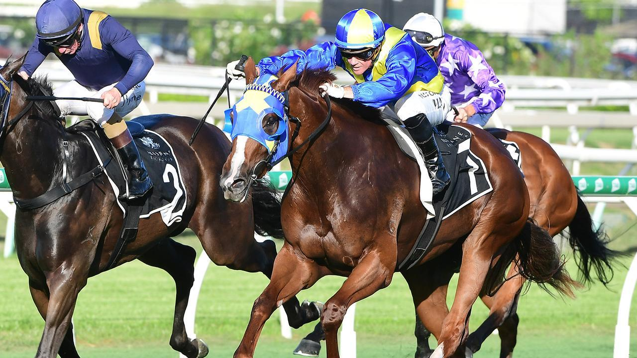 Tycoon Evie (outside) has won her past three starts. Picture: Grant Peters/Trackside Photography