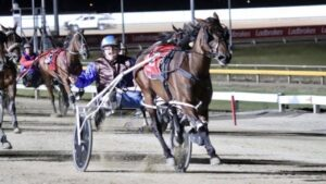 Bullys Delight 'winning' the 2021 Tasmania Cup with Rhys Nicholson in the sulky. Photo: Courtney Pearce