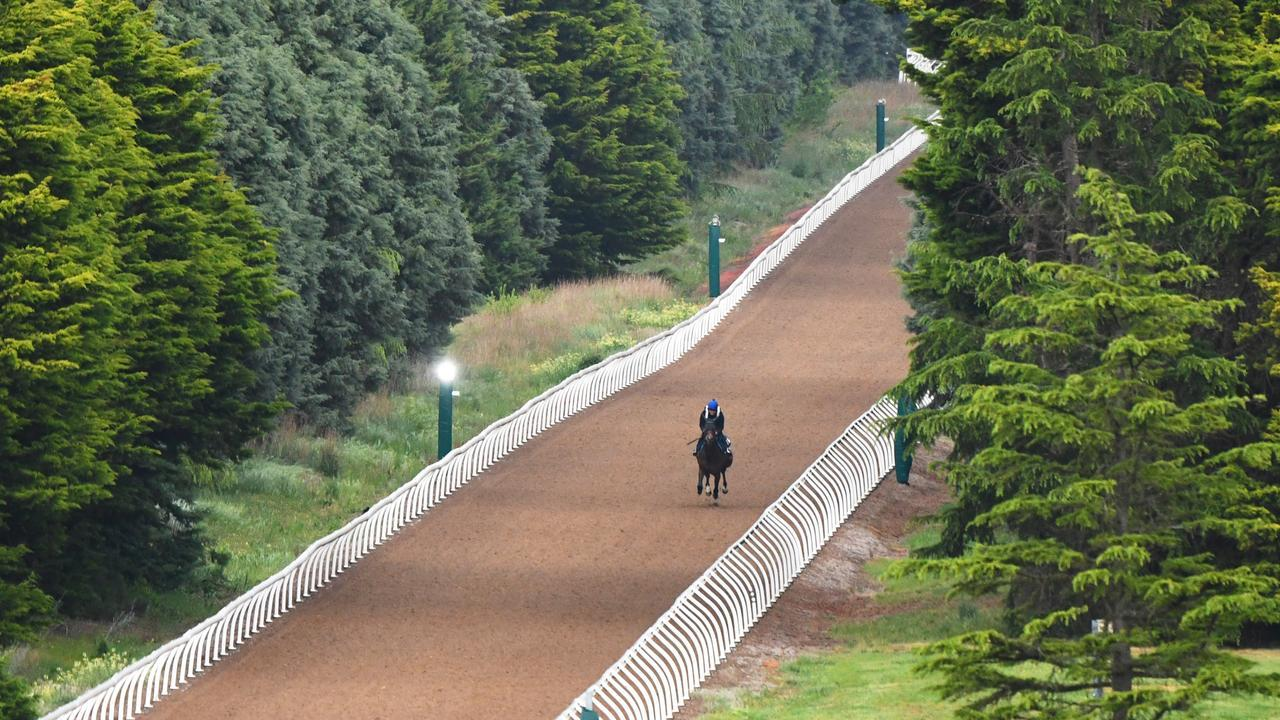 Ballarat's trackwork facility was the scene of a stewards' raid that nabbed six track riders for drug offences in recent weeks. Picture: Vince Caligiuri/Getty Images