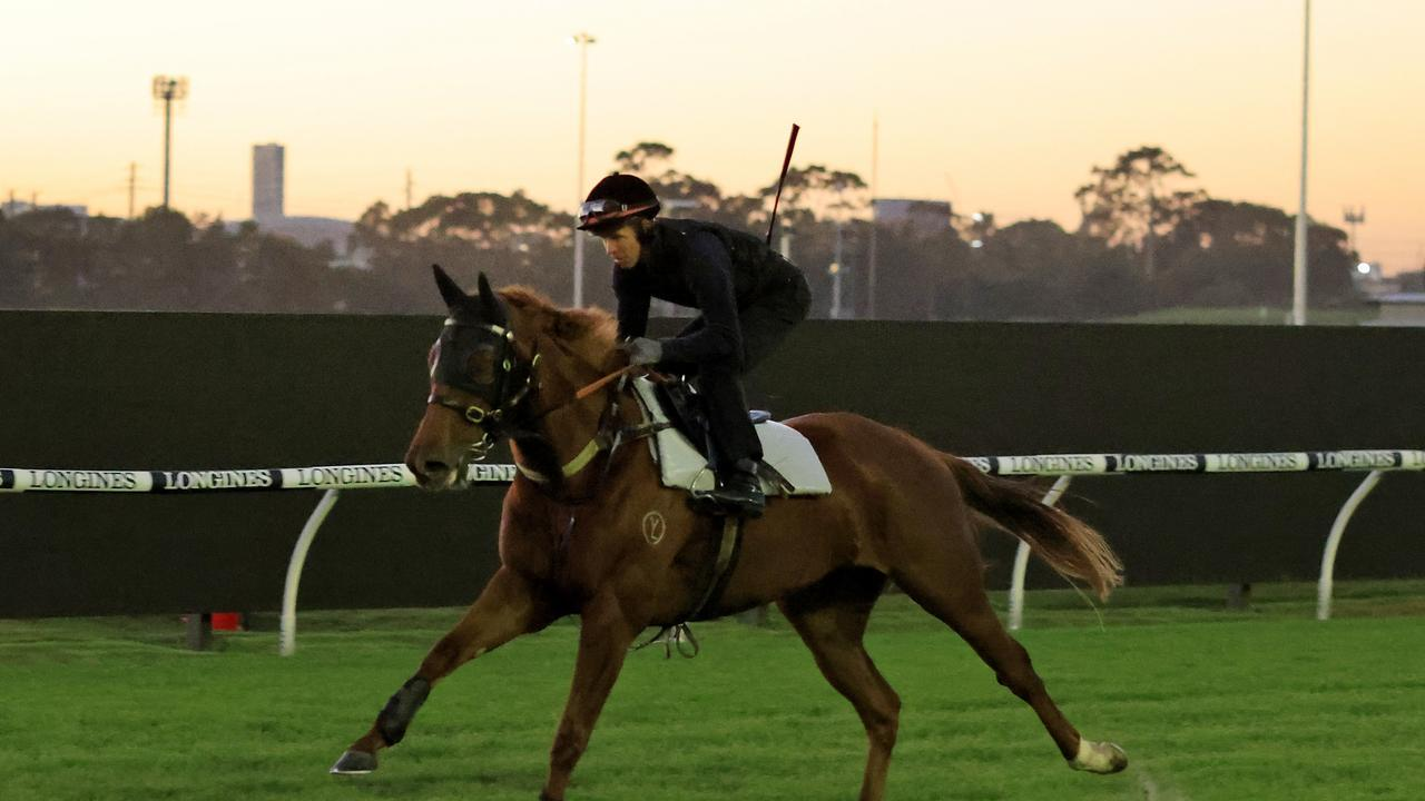 Hungry Heart is primed for the Australian Oaks. Photo: Mark Evans/Getty Images