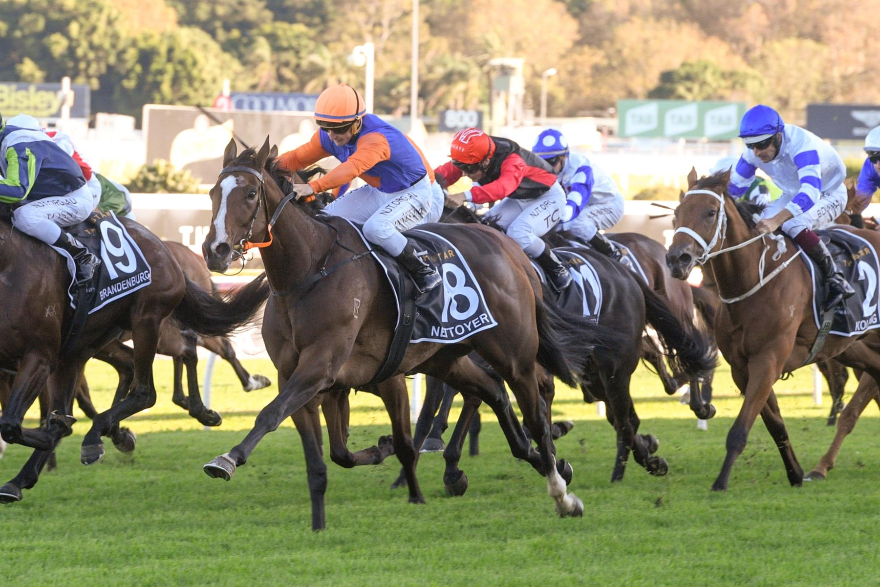 Nettoyer can find winning form on Saturday.