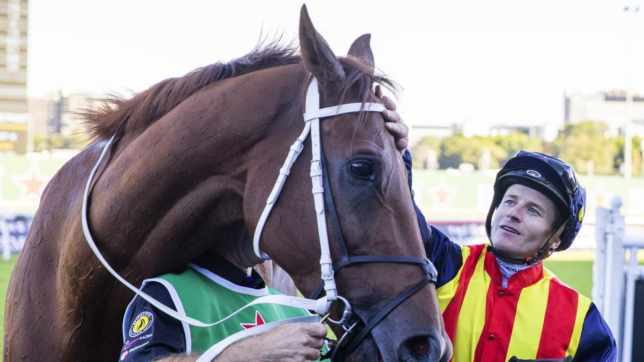 Nature Strip is set to showcase his talents in the Doomben 10