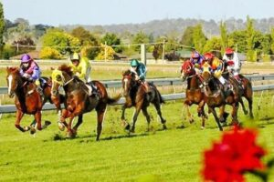 It's Spring Cup Day at Armidale