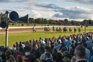 Just the one bet at Grafton but confidence is sky high
