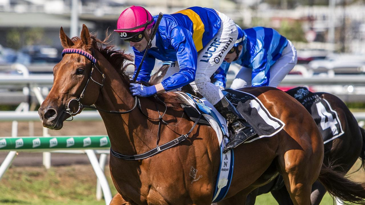 Gem Of Scotland is third-up after nearly 12 months on the sidelines. Picture: AAP