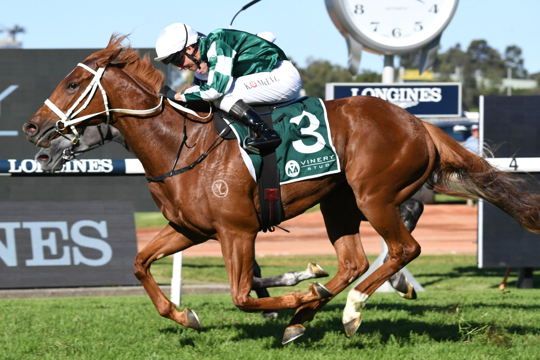 Hungry Heart edges out Harmony Rose in the Vinery Stud Stakes.
