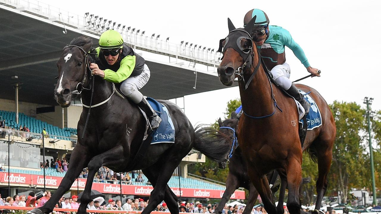 Persan ridden by Matthew Cartwright wins first-up at Moonee Valley. Photo: Pat Scala/Racing Photos via Getty Images