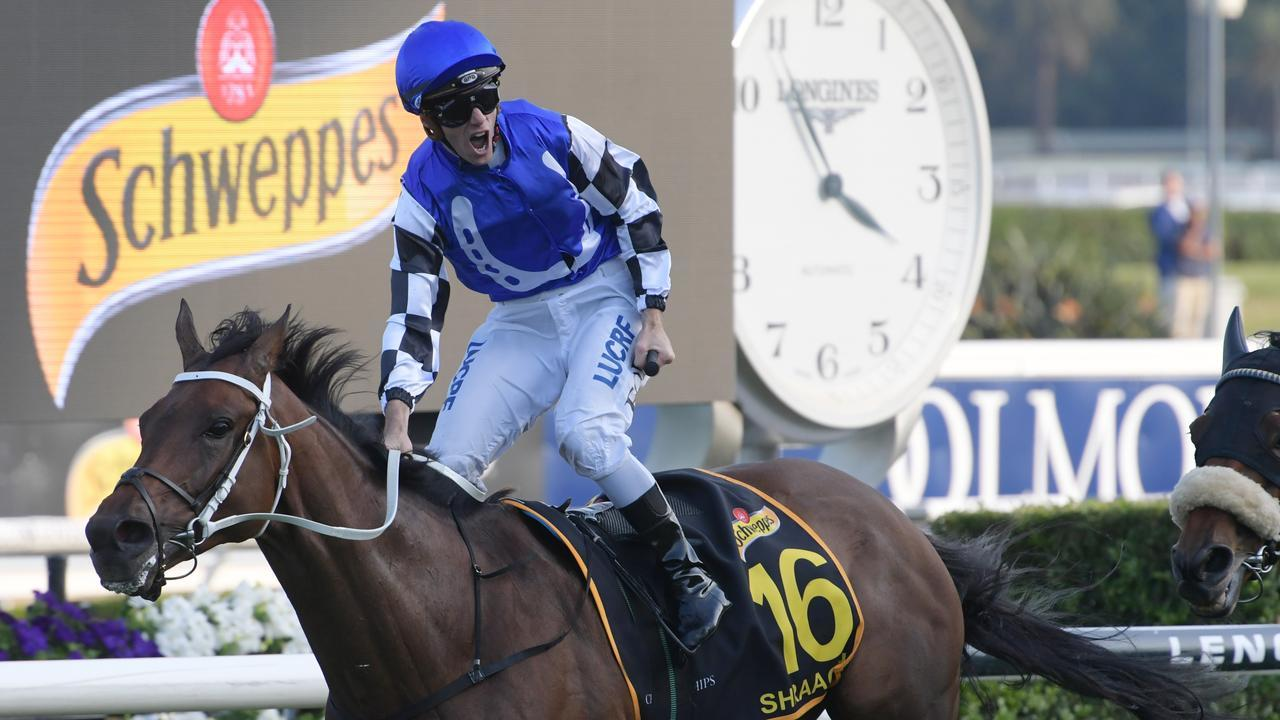 Shraaoh is looking to end a near two-year winning drought in the Tancred Stakes. Picture: AAP