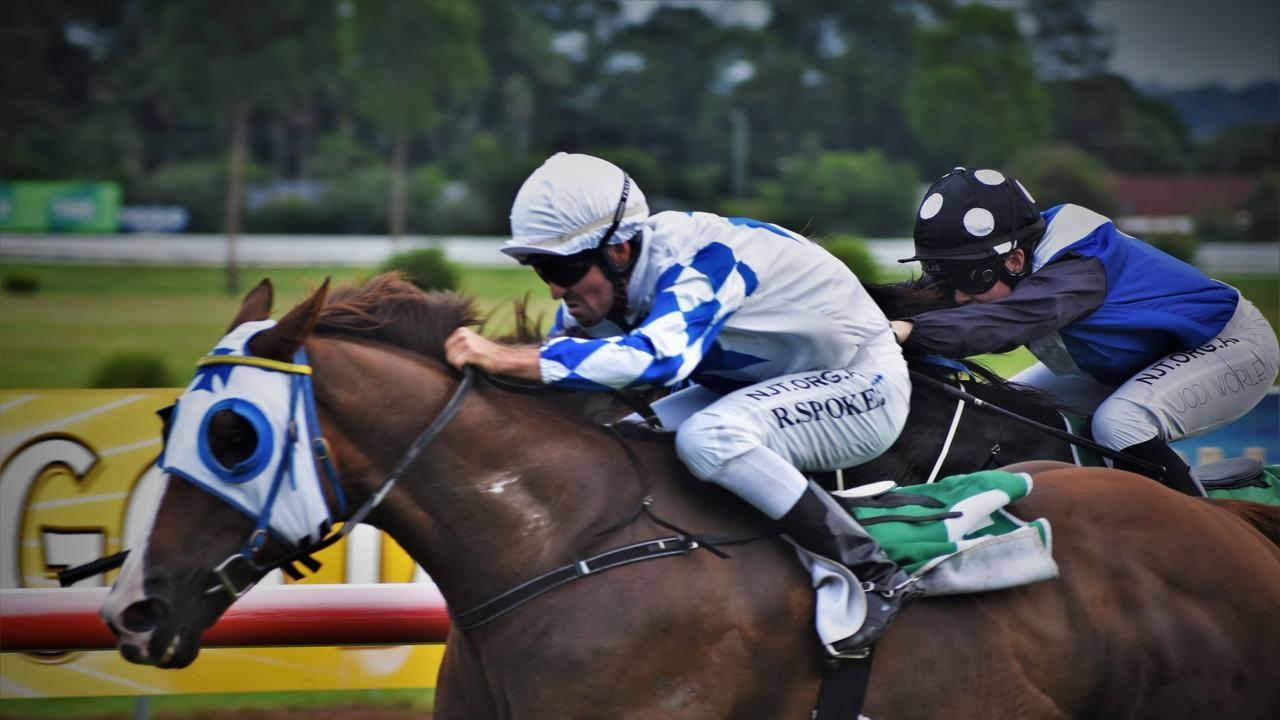 Raymond Spokes rode Patriot for John Sprague to win the Yamba Cup at Grafton. Photo: Bill North / The Daily Examiner