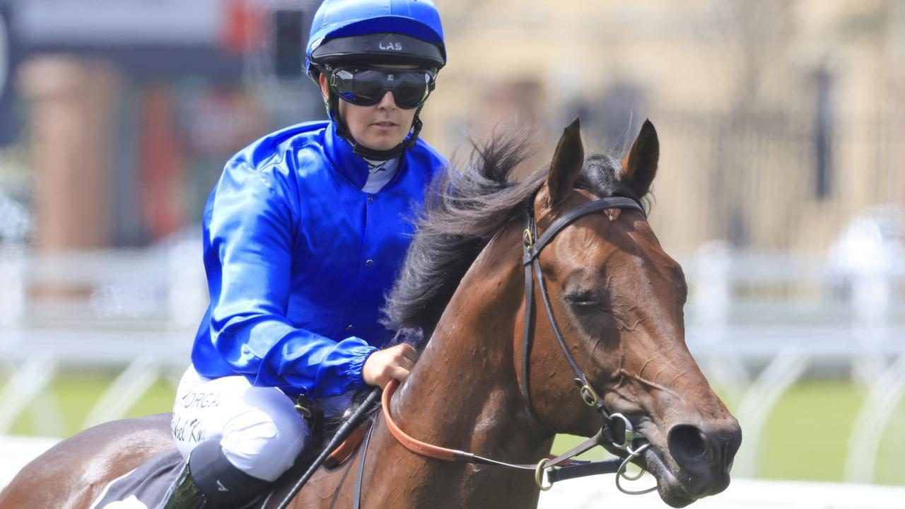 Anamoe is equal favourite for the Inglis Sires. Photo: Mark Evans/Getty Images