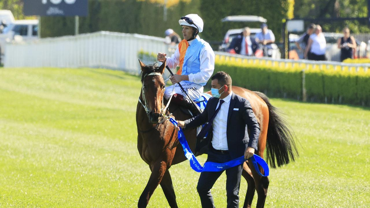 Montefilia is likely headed towards the Australian Derby. Photo: Mark Evans/Getty Images