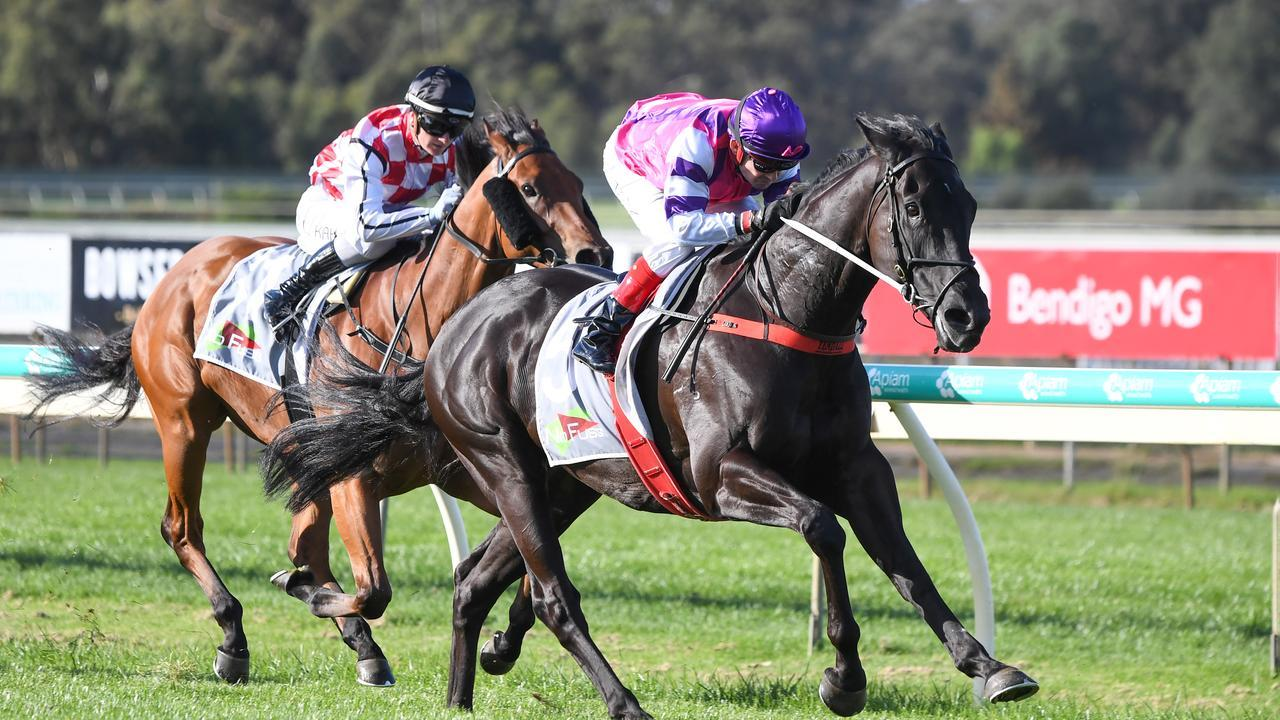 Fighting Harada races away to win the last at Bendigo and land a massive $200