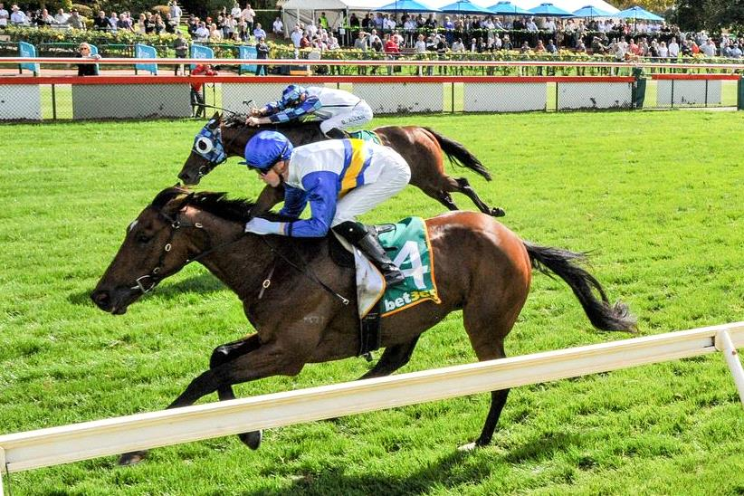 Winning machine Liqueuro looks headed to much better races for Cindy Alderson.