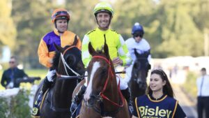 Nash Rawiller copped two bans on Saturday at Rosehill. Photo: Mark Evans/Getty Images