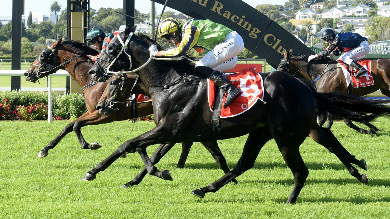 Milford (lime green) was second to Rocket Spade in the New Zealand Derby (2400m). Photo: Kenton Wright (Race Images)