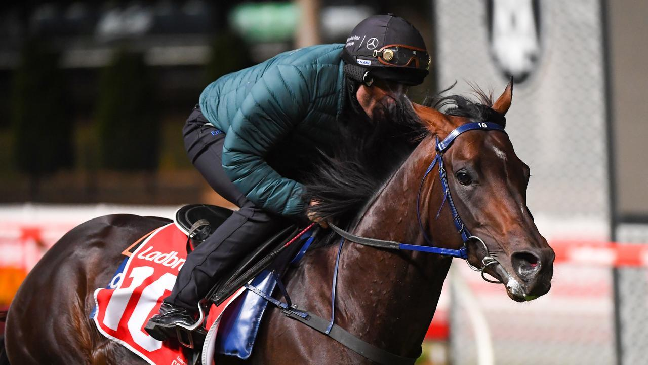 Champion jockey Damien Oliver rode All-Star Mile contender Russian Camelot in a track gallop at The Valley on Tuesday morning. Picture: Getty Images