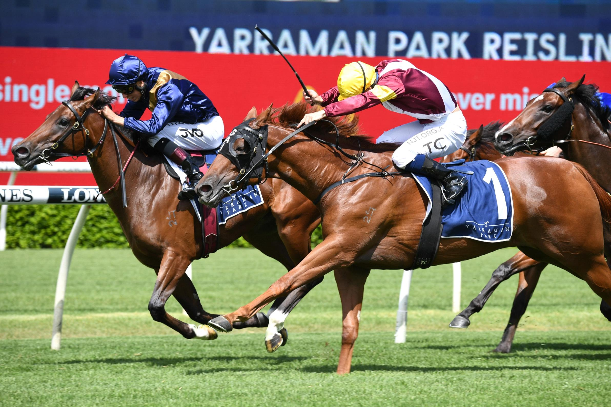 Glistening holds on to beat Swift Witness.