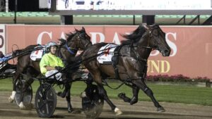 King of Swing winning the 2020 Miracle Mile at Menangle .