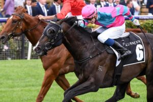 Punters were left stunned with 300/1 outsider Lunar Fox claiming the Australian Guineas.